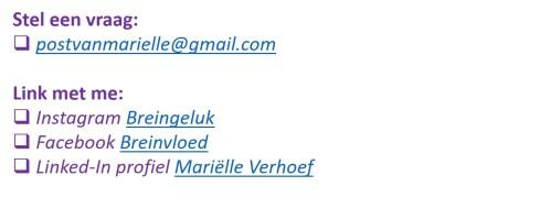 contactgegevens op site